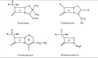 ß-lactámicos