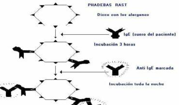 Inhibición del RAST