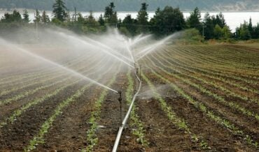 Deducción por Inversiones en Nuevas Plantaciones, Riegos, Pozos y Silos