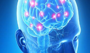 Neuroendocrinología