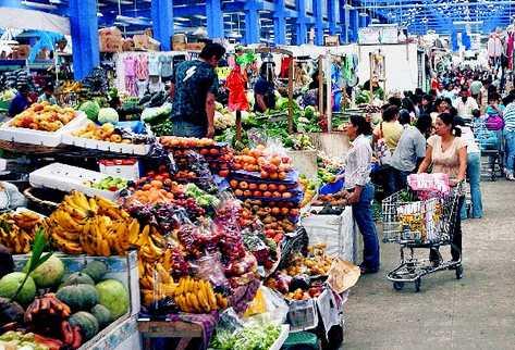 Sector Informal en Colombia y la Región Andina