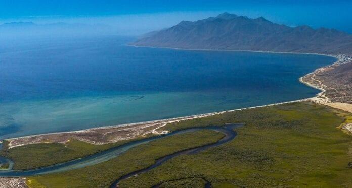 Baja Sur de California Bahía Magdalena Mexico