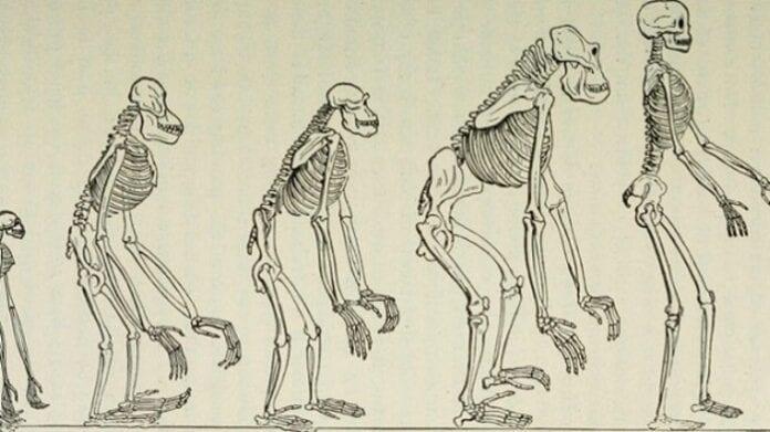 Carrera de Antropología