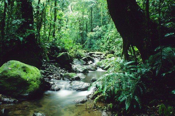 Provincia del Darién en Panamá