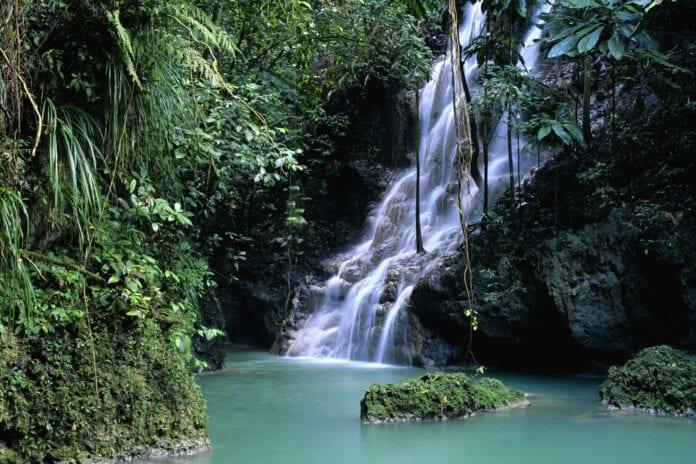 Cascadas en Port Antonio - Caribe