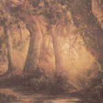 Viejo Bosque - Obras de Jaime Pinto - Arte