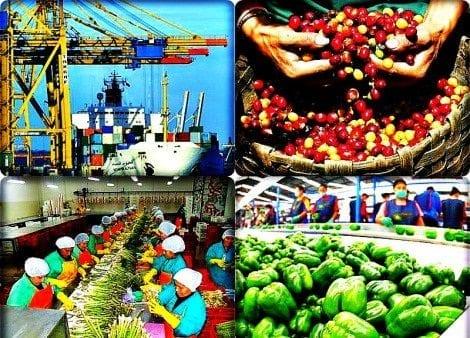 Exportaciones latinoamericanas