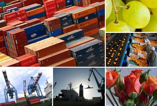 Exportaciones - Dinámica Exportadora - Comercio y Economía