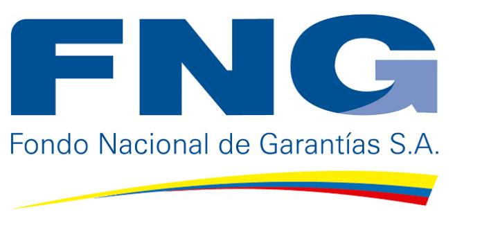 Fondo Nacional de Garantías, FNG