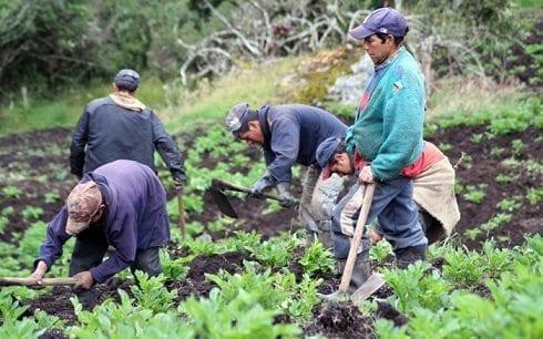 Población Rural Colombiana