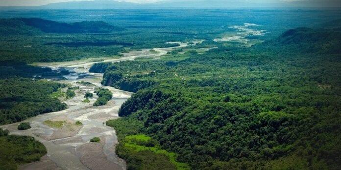medio ambiente Amazonía