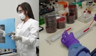 Profesión de Bacteriología