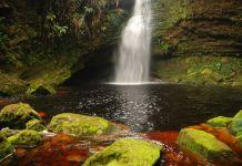 Cueva los Guacharos - Huila