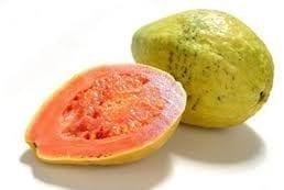 Fruto de la guayaba