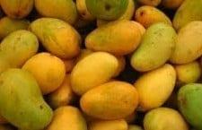 Fruto Camboyana