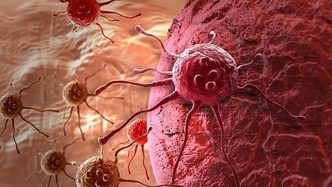 prueba de orina de sangre de fibromas de próstata