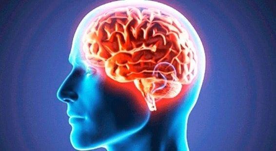 La Hipertensión podría ser una Enfermedad Vascular Inflamatoria del Cerebro