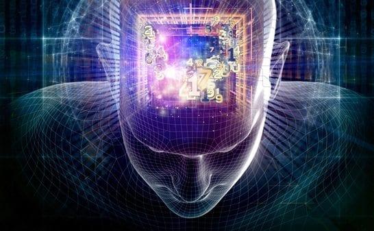 Internet Estimula el Cerebro