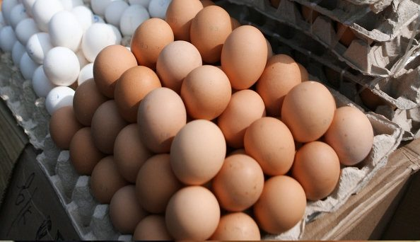 Mundo Produjo 1 Billón 124.000 Millones de Huevos