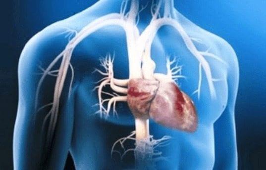 Reducir el Consumo de sal, disminuye el Riesgo de Enfermedad Cardiaca