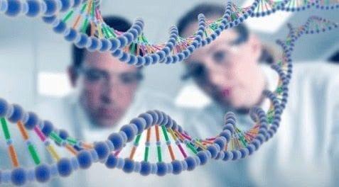 La Terapia con Células madre podría combatir la Diabetes tipo 1