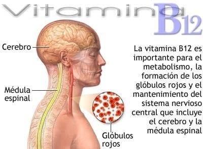 Tomar vitamina B12 puede causar presión arterial alta