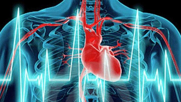 Una Copa Ayudaría a Combatir el Riesgo Cardíaco en Hipertensos