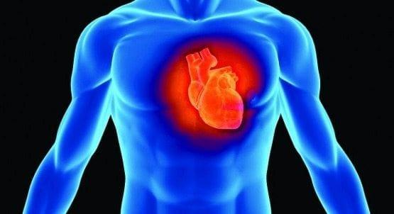 Dos Fármacos contra el Parkinson pueden Causar Daño Cardíaco