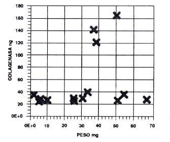 Estimación de colagenasa en pulpas de permanentes