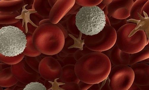 Mutación Genética Podría Ser la Causa de la Neutropenia