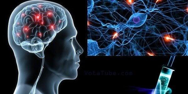 Neuronas Cerebrales