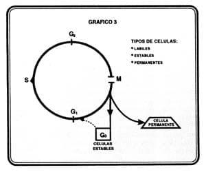 rfco-volumen-57-grafico7