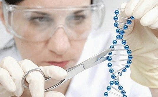 terapias génicas consigue reducir la incidencia del Cáncer y su tamaño