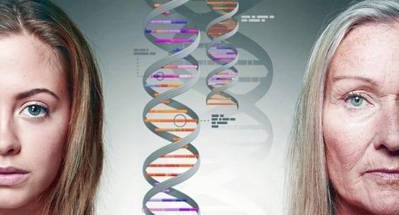 ADN del Cáncer de Mama