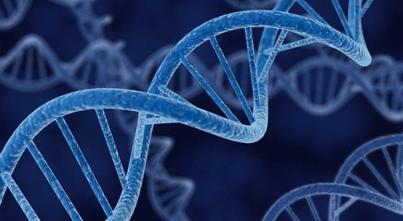 Genes Podrían Relacionarse con el Cáncer de Próstata Letal
