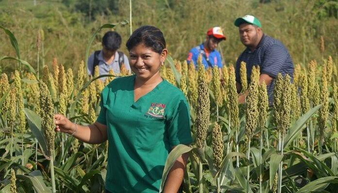 Programa de Oportunidades Rurales