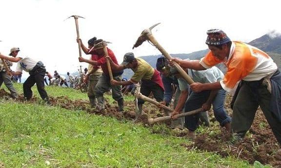 Seguridad Alimentaría Campesinos