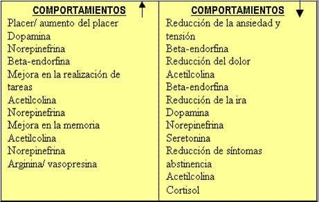 Tabla_Comportamientos