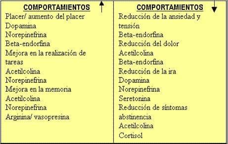 Tabla_Comportamientos