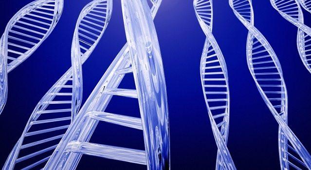Genes en la Obesidad