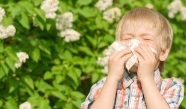Asma Alérgica