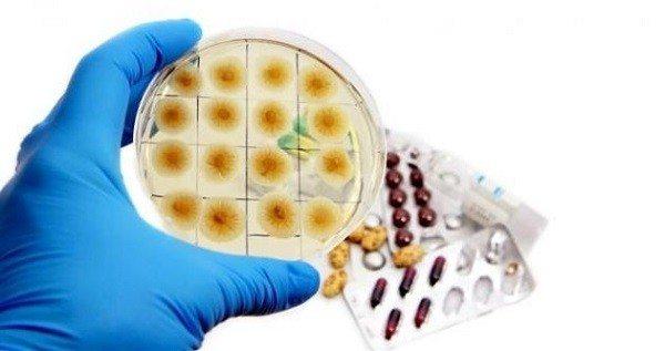 Descubrieron la Penicilina