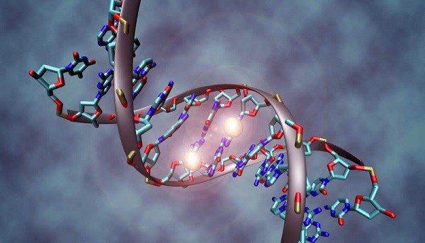 Genes Silenciados