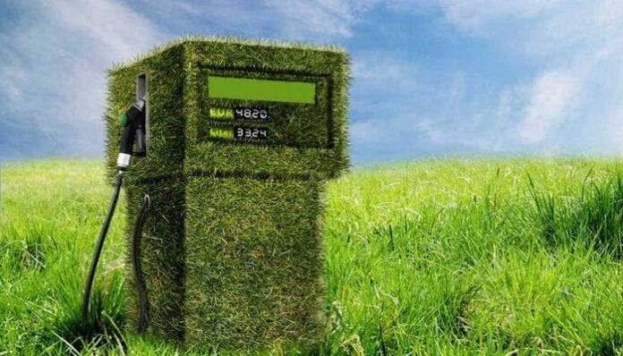 industria de los biocombustibles