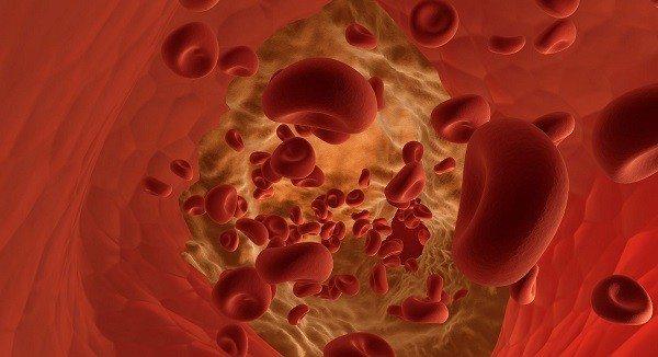 La Hemoglobina