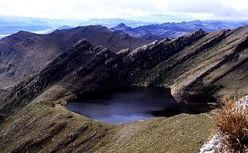 Hectareas Recuperadas Del Parque Nacional Natural Chingaza