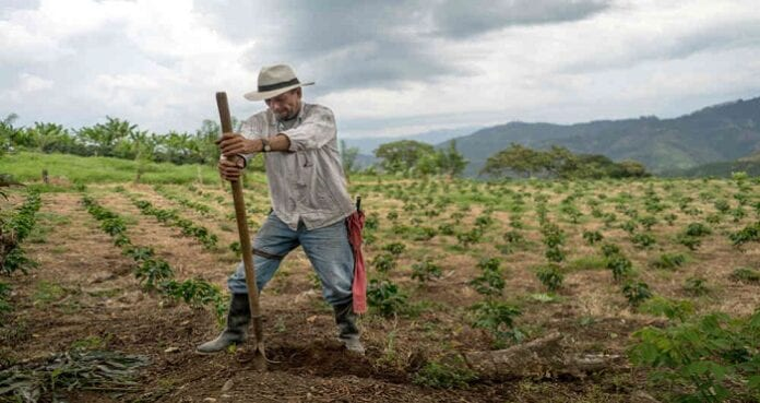 productores y empresarios del agro