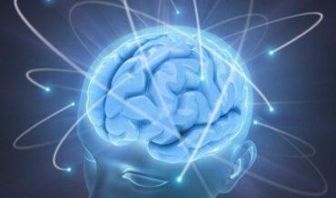 Pronóstico Neurológico - Savant