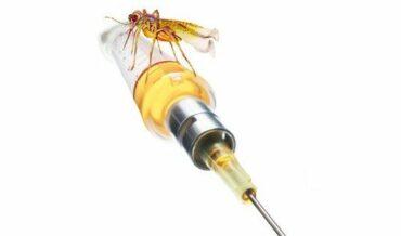 Vacunas Contra la Malaria