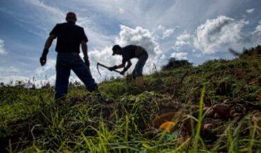 Desarrollo Rural con Equidad